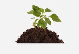 купить растительный грунт с доставкой